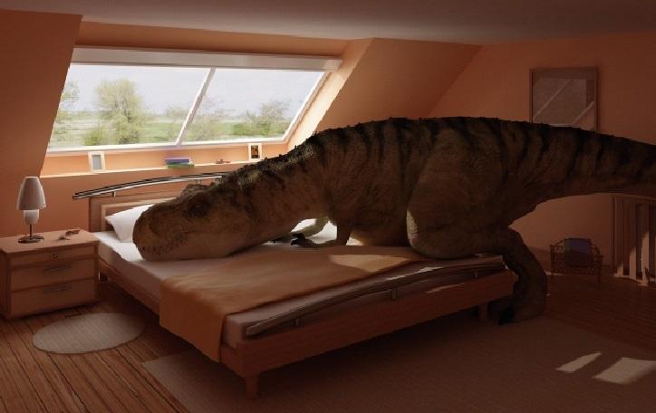 TRASFERIMENTO IN CORSO #7: Tirannosauri e materassi misteriosi